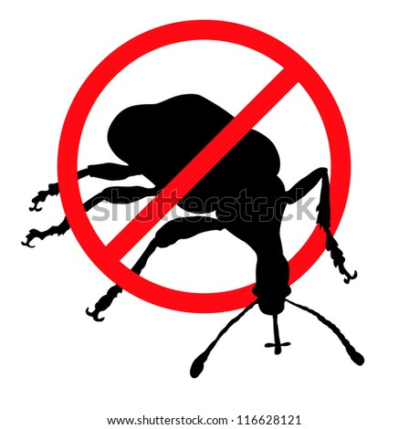 Weevil vector silhouettes isolated. Insect repellent emblem - stock vector