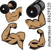 Weightlifter Arms - stock photo