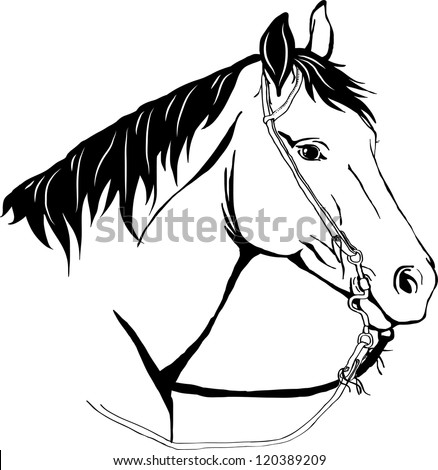 Western Horse 222326458 moreover Vector Fall Of The Leaf 174679 as well Anastasiia Golovkova together with  on anastasiia golovkova
