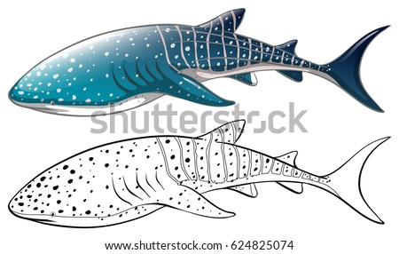 whale shark and outline - Whale Outline
