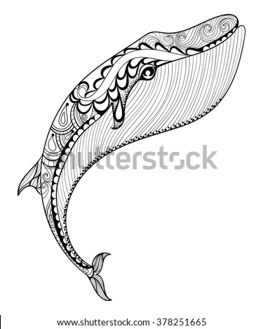 Blue Whale Coloring Pages Affordable Shark Coloring Picture Blue