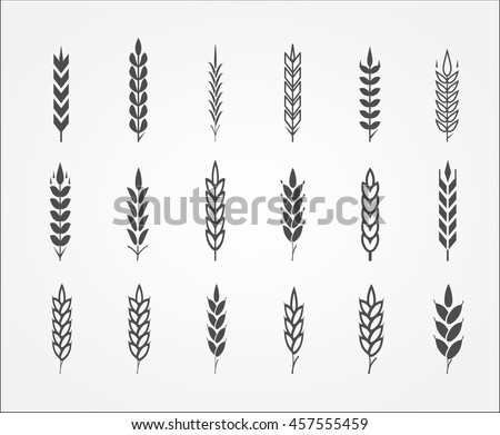 Wheat ear icons - stock vector