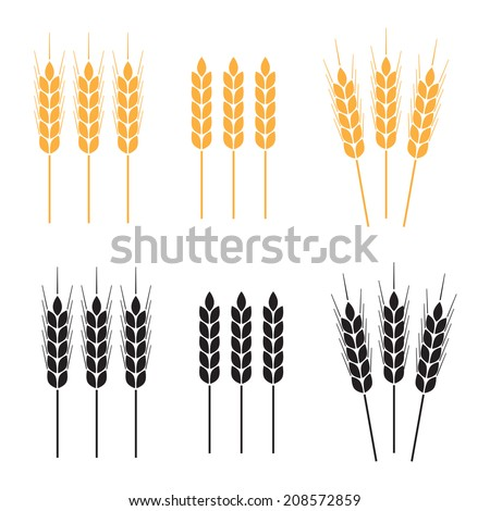 Wheat ears  icon set. Agricultural symbols on white background. Design elements for bread packaging or beer label. Vector illustration. - stock vector