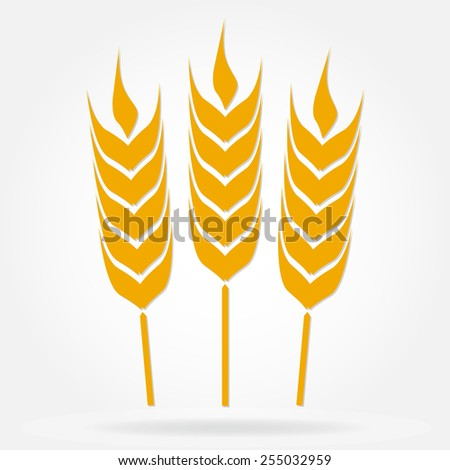 Wheat ears or rice icon. Agricultural symbol isolated on white background. Design element for bread packaging or beer label. Vector illustration. - stock vector