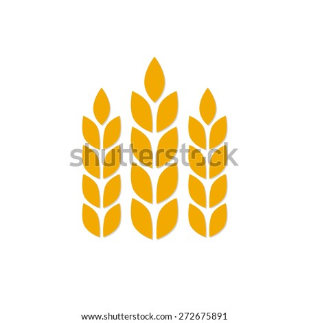 Wheat ears or rice icon isolated on white background. Agricultural symbol. Design elements for bread packaging or beer label. Colorful vector illustration. - stock vector