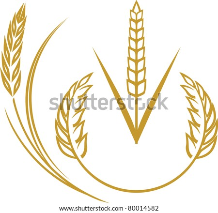 Wheat Elements - stock vector