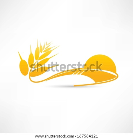 wheat icon - stock vector