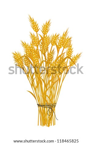 Wheat icon, isolated and grouped objects on white - stock vector