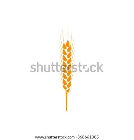 wheat icon, wheat icon eps10, wheat icon vector, wheat icon jpg, wheat icon picture, wheat icon app, wheat icon web, wheat icon art, wheat icon art, wheat icon object, wheat icon flat, wheat icon eps - stock vector