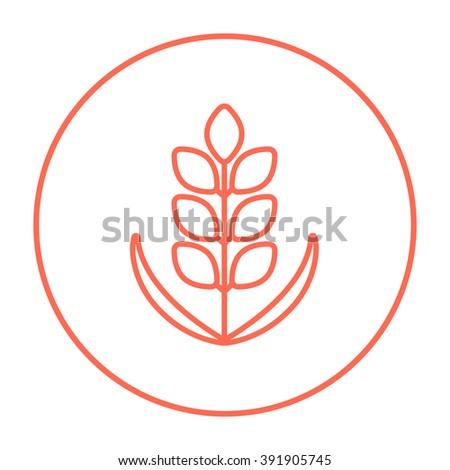 Wheat line icon. - stock vector