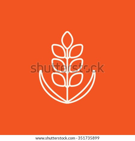 Wheat line icon for web, mobile and infographics. Vector white icon isolated on red background. - stock vector
