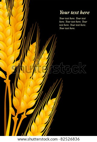 Wheat on black background - stock vector