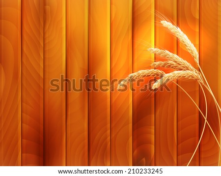 Wheat spikes on wooden board. EPS 10 vector file included - stock vector