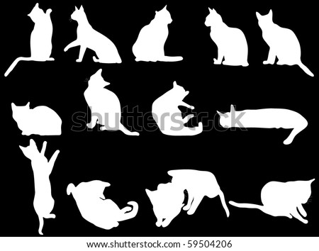 White cat - stock vector