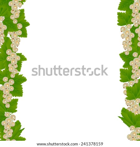 White currants borders with leaves isolated on white background