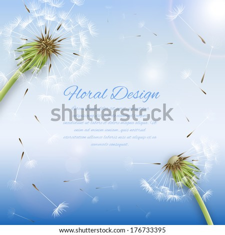 White dandelion with pollens background or cover template vector illustration - stock vector