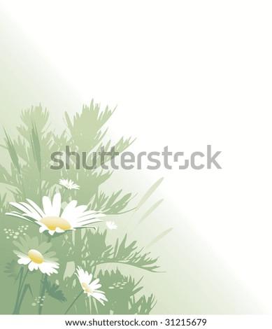 white flower - stock vector
