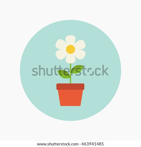 white flower in flat style on blue background
