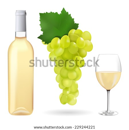 White grapes, a bottle of white wine and a glass - vector drawing isolated