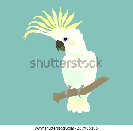 White Parrot cockatoo isolated on turquoise background. Exotic birds. Vector. - stock vector