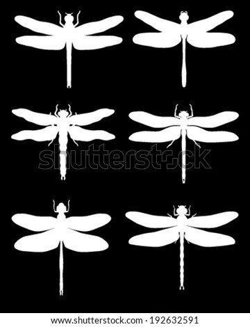 White silhouettes of dragonflies on a black background, vector - stock vector