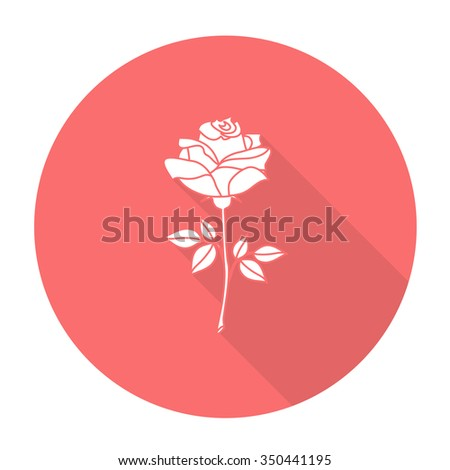 White vector rose on color circle background. - stock vector