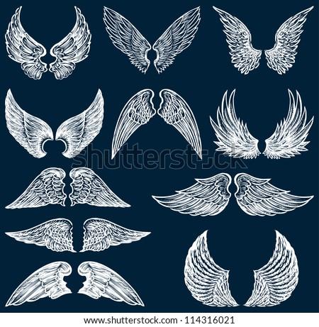white wings - stock vector