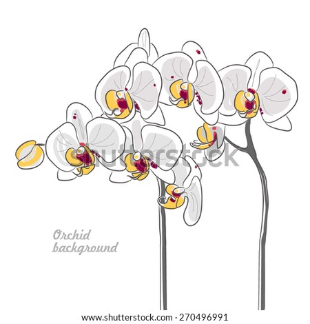 white yellow center orchid - stock vector