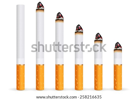 Whole and burning cigarette. Vector Illustration on white background.