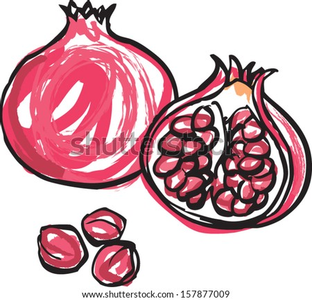 Whole and half pomegranate vector illustration - stock vector