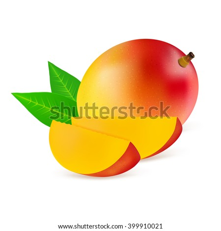 Whole mango fruit and his sliced segments isolated on white background. Realistic vector illustration. - stock vector