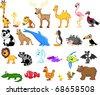 wide range of animals - stock vector