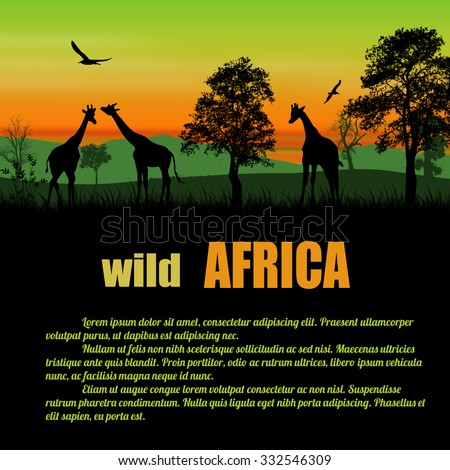 Wild Africa poster. Giraffes silhouettes on green sunset with space for your text, vector illustration - stock vector