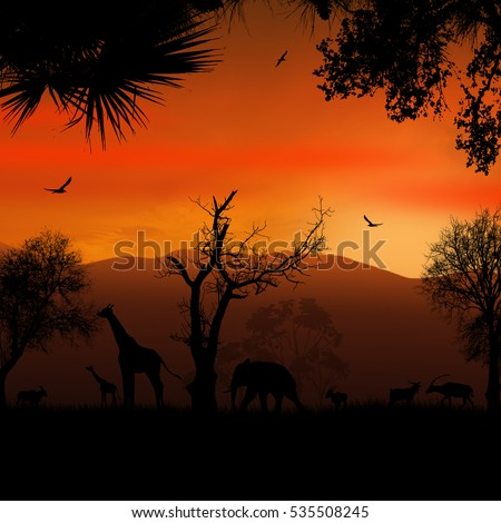 Wild african animals silhouettes in beautiful sunset, vector illustration