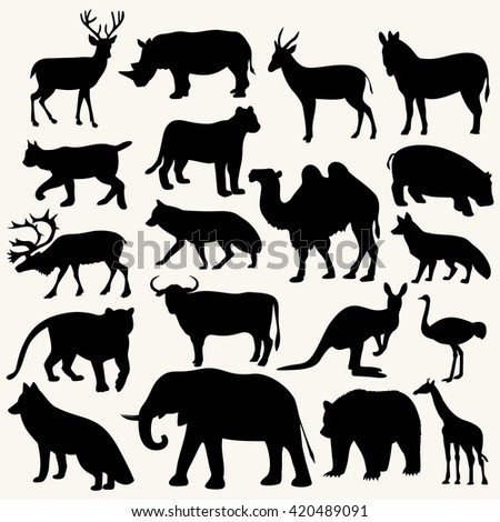 wild animals picture,vector illustration