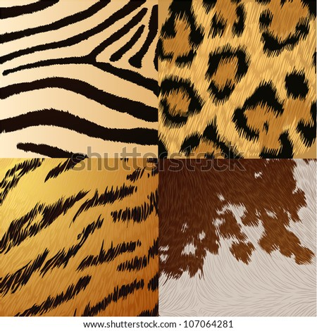Wild animals skin textures - stock vector