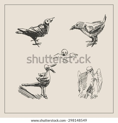 Wild birds set with   raven, prey bird, eagle and vulture , in engraving etching sketch hand drawing style, for wildlife, animals and zoo design - stock vector