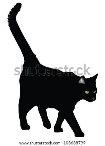 Wild black cat - stock vector