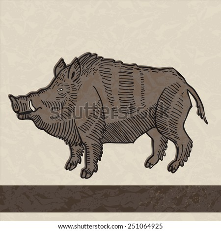 Wild boar in vintage style - stock vector