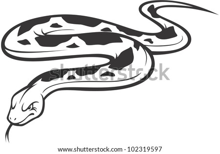Wild Burmese Python Illustration Stock Vector 102319597 Shutterstock