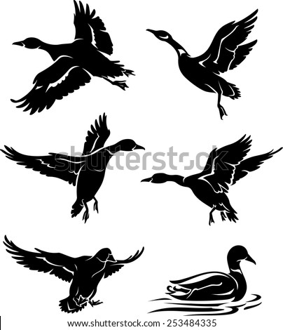 Wild Duck Silhouettes