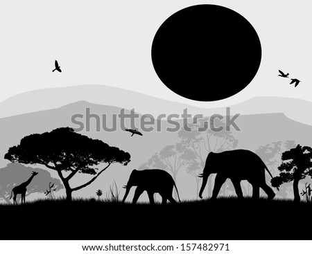 Wild elephants and giraffe at sunset on black and white, vector illustration - stock vector