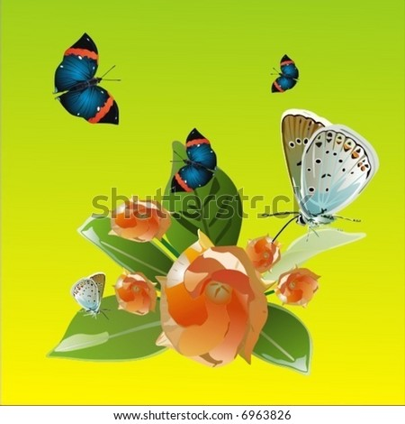 wild flowers - stock vector