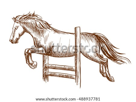 wild horse runs and jumps over barrier white stallion leaping over fence vector thin