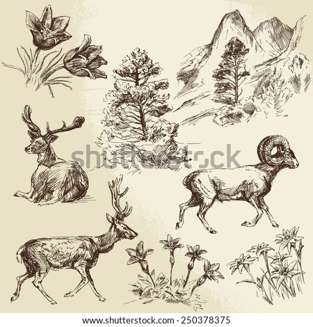 wild nature, forest and mountains - hand drawn illustration - stock vector