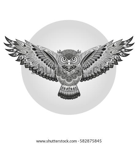 Owl Wings Vector