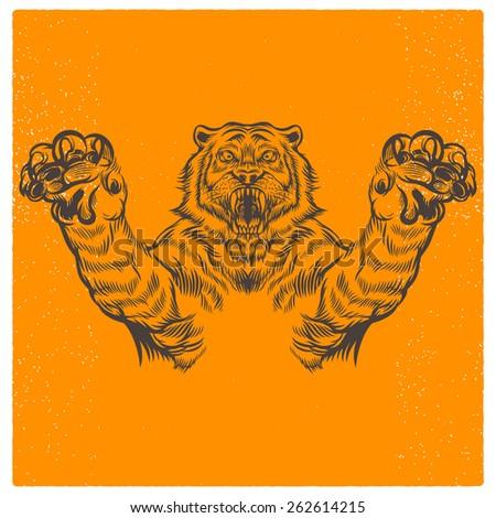 wild tiger vector illustration - stock vector