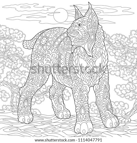 Wildcat Coloring Page Colouring Picture Adult Stock Vector ...