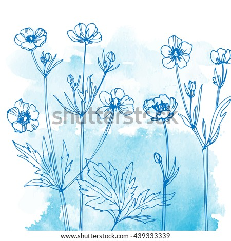 Wildflowers. Buttercups. Flowers line drawn on watercolor background. Vector sketch. Set of floral elements. Wedding decorations. - stock vector