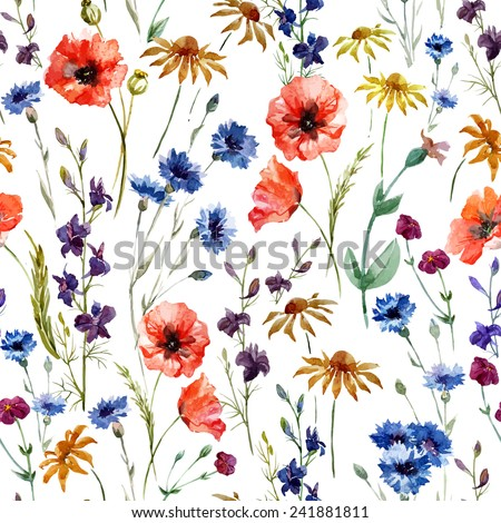wildflowers, watercolor, poppy, cornflower, chamomile, background - stock vector